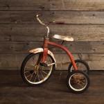 Trike - Large