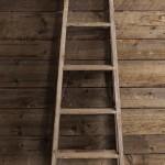 Ladder - 5 Ft